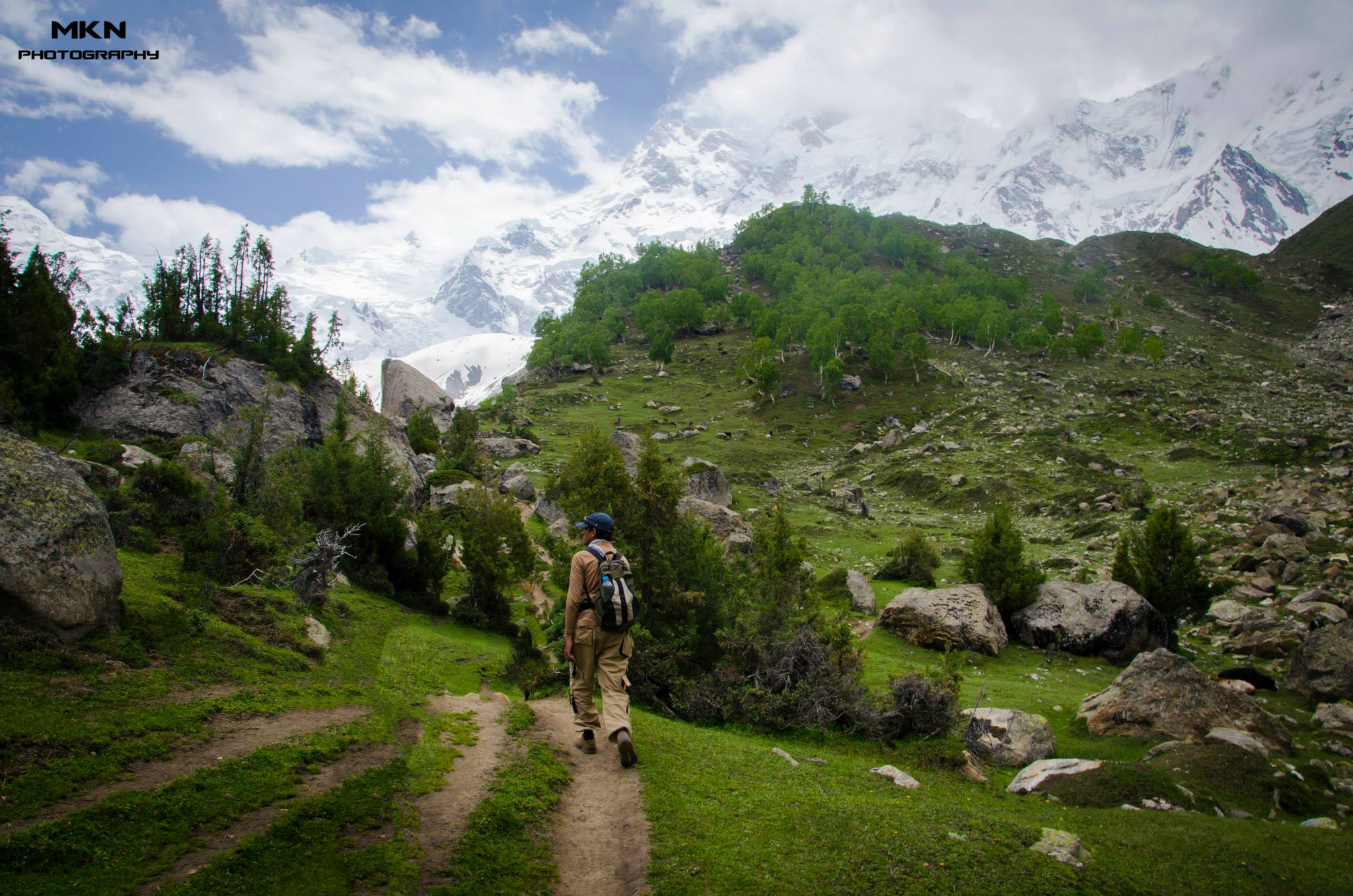 Trekker on the way to Nanga Parbat base camp