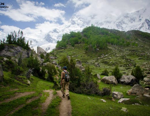 Fairy meadows to Nanga Parbat base camp trek