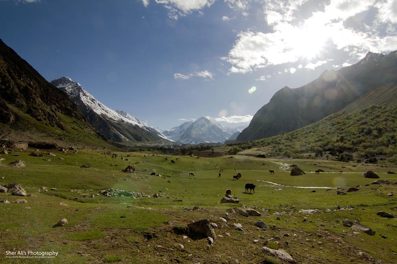 Chillain village, Rupal valley, Astore